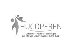 Webmaster Nantes Wordpress HUGOPEREN