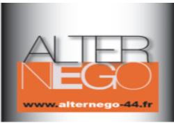 AlterNego