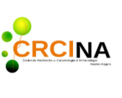 Site WordPresss CRCINA