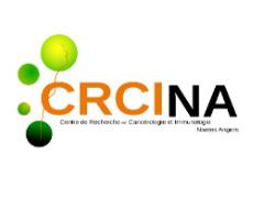 Site WordPresss CRCINA