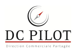 Site Wordpress Exprico - DC pilot