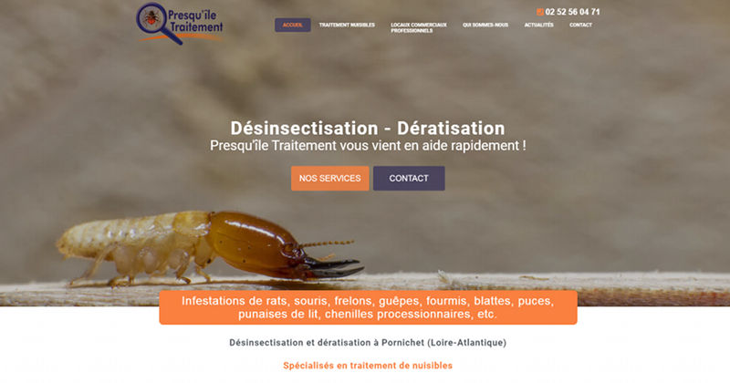 Agence WordPress Nantes Presquile Traitement